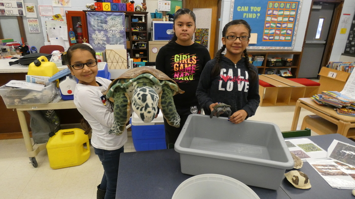 Students holding turtles