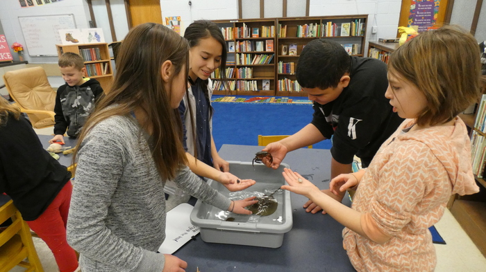 Students holding sea creatures